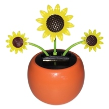 Solar Dancing Flower Sunflower