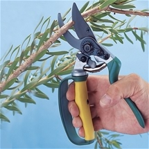 Heavy Duty Shears