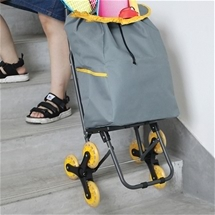 Stair Climber Shopping Cart