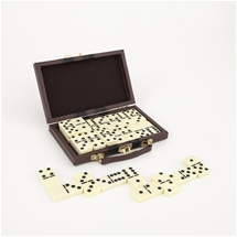 Domino Set With Storage Case