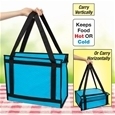 Insulated Hot and Cold Carry Caddy_K1874_0